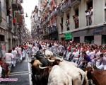 فستیوال گاوبازی در پامپلونای اسپانیا+۸عکس