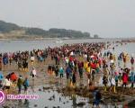 رویدادی عجیب/ دریا شکافته شد و هزاران تن از آن عبور کردند +عکس