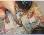 بازیگوشی دردناک پسر بچه در حمام/تصاویر