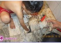 بازيگوشي دردناک پسر بچه در حمام/تصاوير