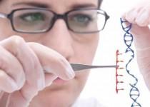 ساخت حسگرهای آمینو اسید برای پیشگیری و درمان بیماریهای ژنتیکی