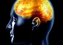 پیشنهاد محققان برای پیشگیری از زوال عقل زودرس