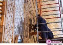 نصب کتیبه ایرانی بر ورودی ایوان طلای امیرالمومنین(ع) +7عکس