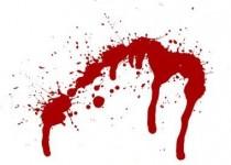 دو برادر برای سرگرمی مادر خود را کشتند