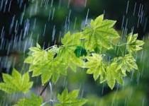 پیشبینی هواشناسی از وضعیت جوی کشور در روز یکشنبه