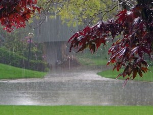 """""""بارش""""ها از امشب تا سه شنبه هفته آینده تداوم دارد"""