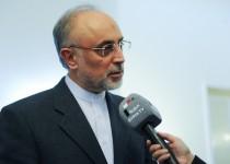 صالحی خبر داد: دستگیری 4 خرابکار در یکی از تاسیسات هستهای