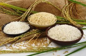 کاهش قیمت برنج در بازار