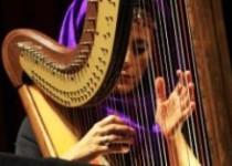 اجرای نوازندگان سوییس در کنار هنرمندان ایرانی
