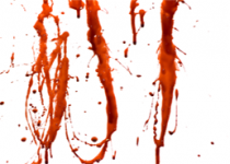 قتل هولناک زن میانسال/جسد قربانی از بالای کوه به پایین پرتاب شد