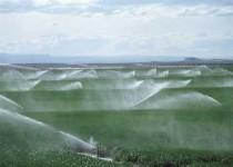 راندمان پایین آبیاری در بخش کشاورزی آذربایجان غربی
