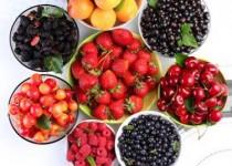 راه اندازی بازارچه محصولات کشاورزی عامل مهم حذف واسطهها