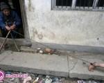 کودکی که با زنجیر محافظت میشود+تصاویر