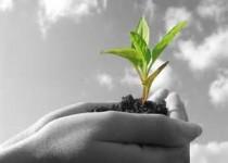 راهکارهای توسعه ، ایجاد ثروت و اقتصادی سازی کشاورزی آذربایجان غربی
