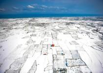 وضعیت سفید در مناطق سفیدپوش شمال