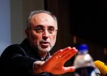 صالحی: غرب ماجراجویی سیاسی نکند/آژانس در مذاکرات شتاب نداشته باشد