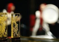 برگزیدگان بخش مستند جشنواره فیلم فجر معرفی شدند