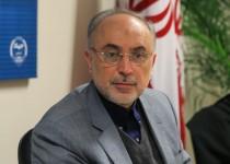 صالحی: 1+5 از فرصت تعامل با ایران استفاده کند
