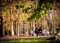 پارک «صلح و دوستی» ایران و عراق در مهران ایجاد میشود