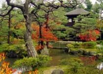 احداث یکی از بزرگترین مجتمعهای گردشگری جهان در ژاپن