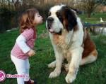 کودکان و دوستی با حیوانات +تصاویر
