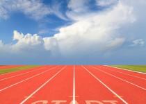 سریعترین دونده خشکی، اندازه یک کنجد است!