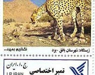 منتشر شدن اولین تمبر اختصاصی یوزپلنگ آسیایی در بافق 