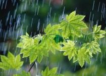 هشدار نسبت به بارش شدید باران در 8 استان