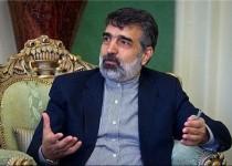 کمالوندی: نظارت آژانس بر برنامه هستهای ایران در حد عرف بوده است