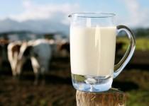 هنگام مصرف شیر توصیههای بهداشتی را جدی بگیرید