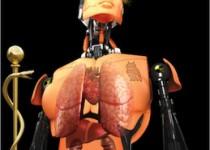دانشمندان در آستانه تولید نخستین انسان مصنوعی آزمایشگاهی