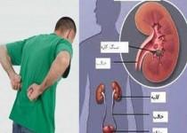 دیابت و فشارخون دو عامل اصلی تهدیدکننده سلامت کلیهها