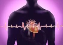 تحقیقات نشان داد: تاثیر کمبود آهن در مرگ زودتر مبتلایان نارسایی قلبی