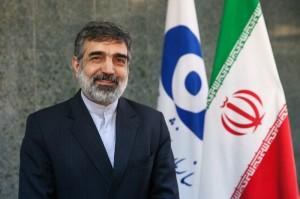 کمالوندی: به نحوهی جمعبندی آژانس از همکاریهای ایران ایراد داریم