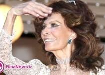 درخشش سوفیا لورن 80 ساله در کن/عکس