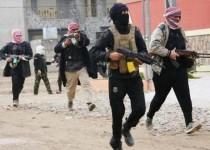شفیعی: عربستان و ترکیه هم از تحرکات افراطی داعش در امان نخواهند بود