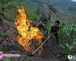 روستایی که با یک جرقه شعلهور می شود +عکس