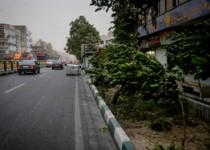 احتمال وزش باد شدید در تهران/ تندباد شمال تهران 50 کیلومتر بر ساعت بود
