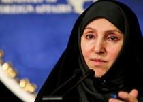 افخم: آمریکا به خاطر حمایت از رژیم صهیونیستی بیاعتبار شده است