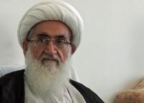 آیتالله نوریهمدانی: صدور حکم اعدام برای شیخ نمر را تحمل نمیکنیم