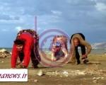 دانشمندان به دنبال راز خانواده چهاردست وپا +عکس