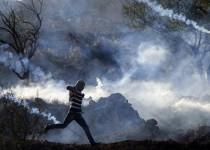 معنویت رمز مقاومت فلسطین است