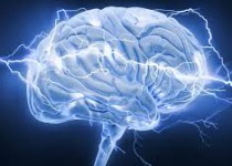 توانایی مغز انسان در پیش بینی حوادث بد