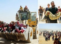 گریختن هزاران تن از ایزدیهای عراق به سوی سوریه + تصاویر