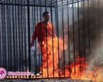 داعش خلبان اسیر اردنی را زنده زنده در آتش سوزاند/تصاویر