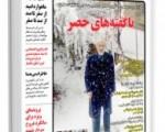 عکس میرحسین موسوی با ادعای دروغین در یکنشریه