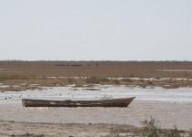 ورود آب به هامون از رود فراه افغانستان/تصاویر