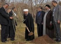 رئیس جمهور درآستانه روز درختکاری نهال کاشت