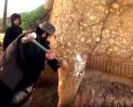تصاویر داعش از تخریب شهر باستانی نمرود