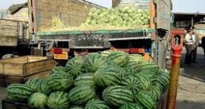 تکذیب خبر«هندوانههای آلوده صادراتی ایران»